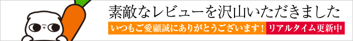 0129pika_review_bar
