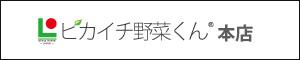 ピカイチ野菜くん®本店(低速ジューサー専門館)